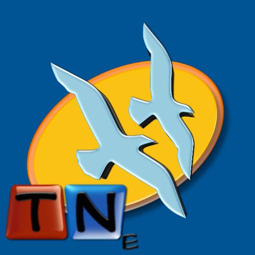 Condo Defense Icon
